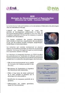 La plaquette BDR-ENVA
