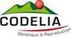 logo_codelia