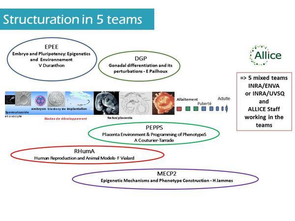 Scientific question - teams