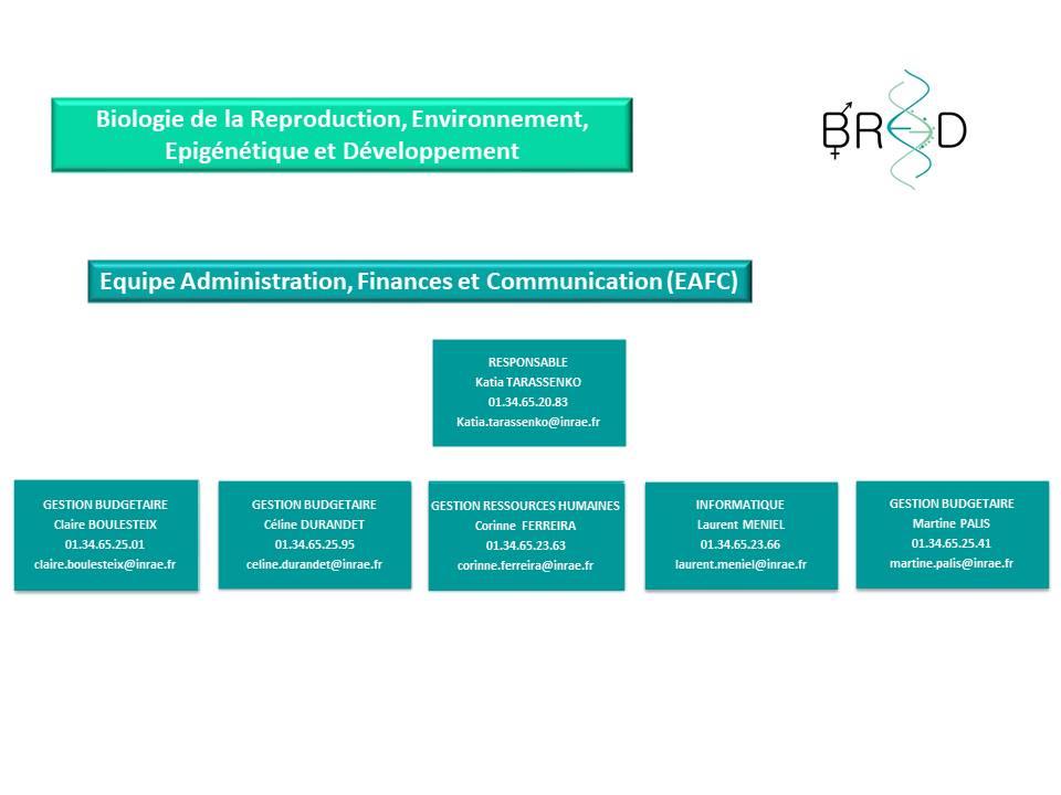 Organigramme EAFC