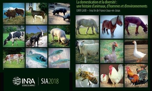 image montrant la biodiversité des espèces animales domestiques