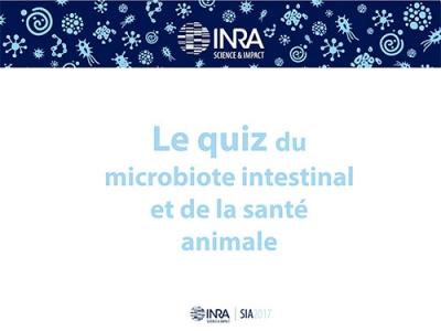 Quiz du microbiote intestinal et de la sélection animale