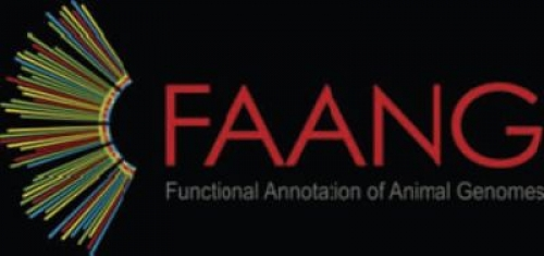 Consortium FAANG