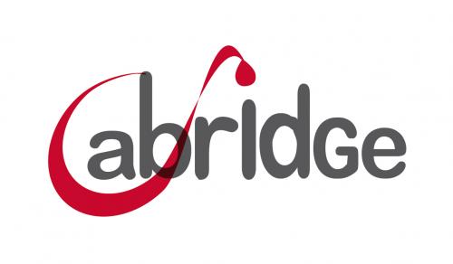 Equipe GABI Plateforme @Bridge