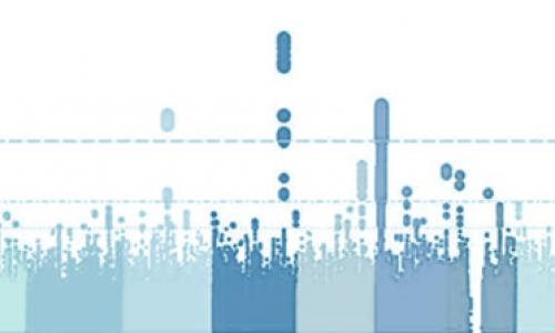 Bovine genome structure variations