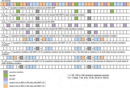 Données de séquence de génome complet en sélection génomique