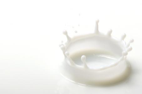 Déterminisme génétique de la composition protéique du lait