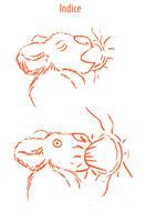 dessin d'animaux en lactation
