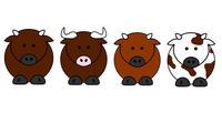 4 vaches avec des colories différentes