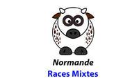 Races mixtes : Normande