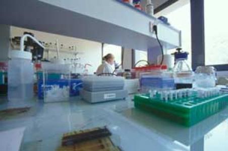 GeMS research technician