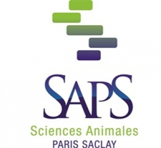 @SAPS