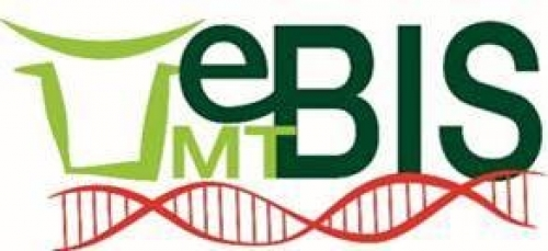 Accreditation of the eBIS UMT