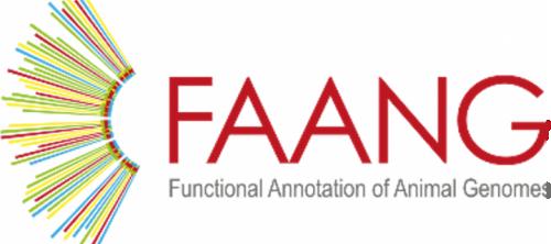 FAANG, European Community
