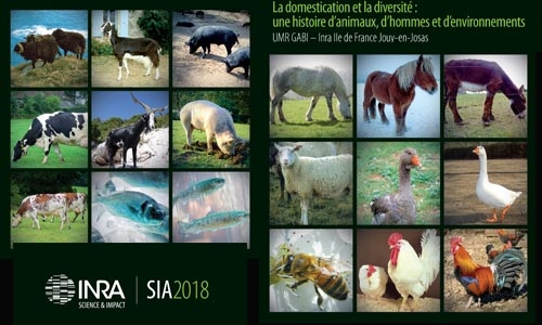 GABI will be present on the INRA stand of the 2018 International Agricultural Fair (SIA)