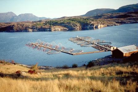 @INRAE  2017-0099 Bassin d'élevage de poisson en mer
