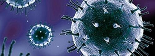 Analyse de la protéine qui permet au SARS-CoV-2 d'infecter les cellules