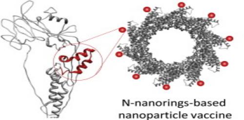 N-nanorings-based nanoparticle vaccine