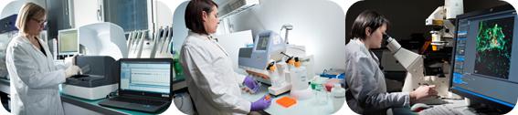 Laboratoire de microbiologie moléculaire