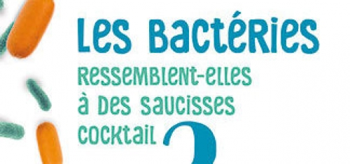 Les bactéries ressemblent-elles à des saucisses cocktail ?