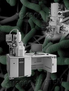 vignette microscopie MEB