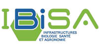 logo Ibisa rectangle