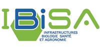 logo Ibisa rectangle