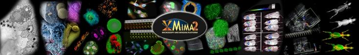 Bienvenue sur le site de MIMA2