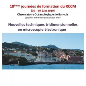 18 èmes Journées du RCCM